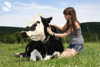 Farm Sanctuary_girl with cow