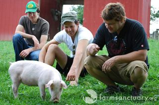 Farm Sanctuary_Colbie Caillat's band members_with Kim Gordon