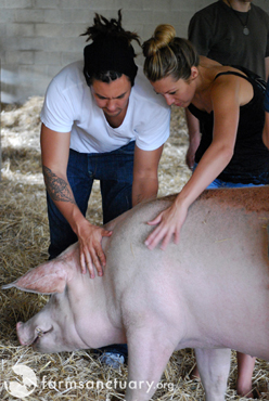 Farm Sanctuary_Justin Young and Colbie Caillat_with pig
