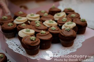 Vegan cupcakes_by Derek Goodwin